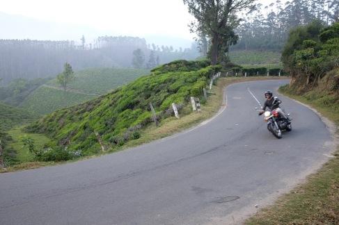 Landstraßen und Teeplantagen in Munnar