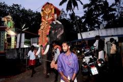 """Auf dem Weg nach Varkala, am Abend von """"Maha Shivaratri"""", der Nacht Shivas. An diesem Feiertag werden in jeder Stadt Elefanten zu Tempel geführt"""